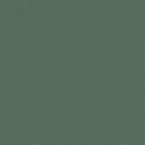 Кухни Мария, Модель Nicolle, Цвет фасада Темная ель